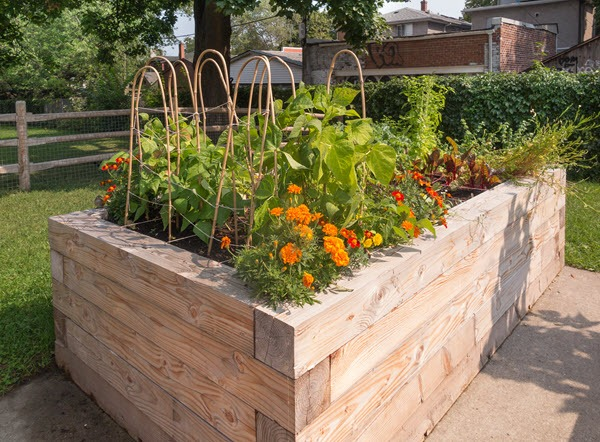 Planting & Raised Beds