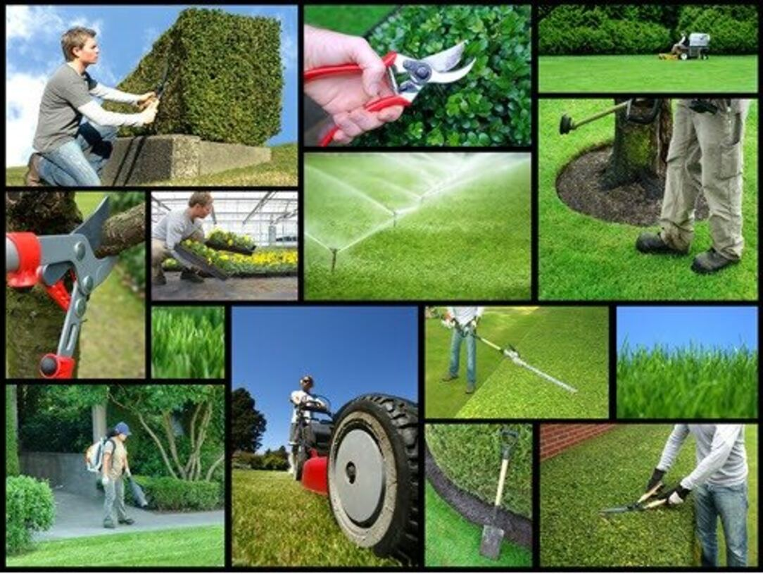 garden and landscaping in Gayhurst