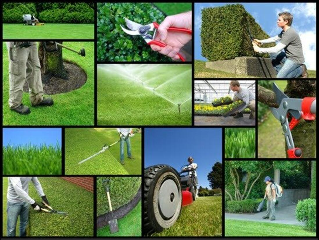 landscaping and gardening in Wroughton Park